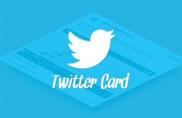 Guide-to-Using-Twitter-Cards-for-your-Business-Promotion